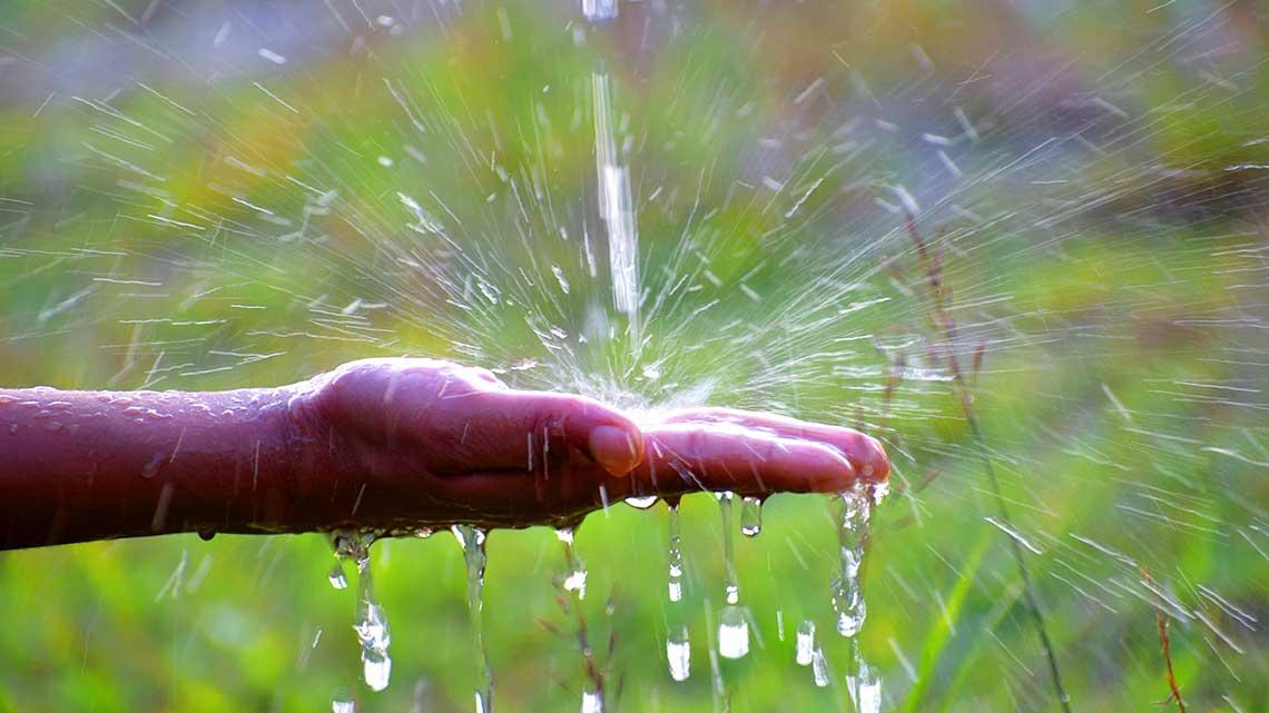 Water Usage Irrigation