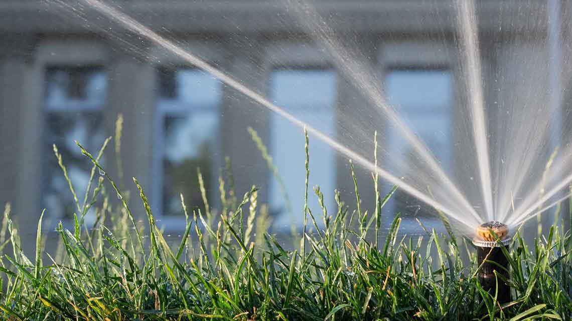 Intelligent Irrigation Systems