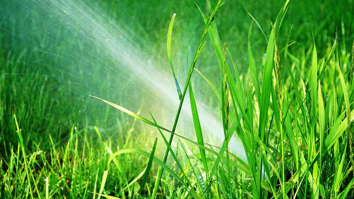 sprinkler system costs per zone